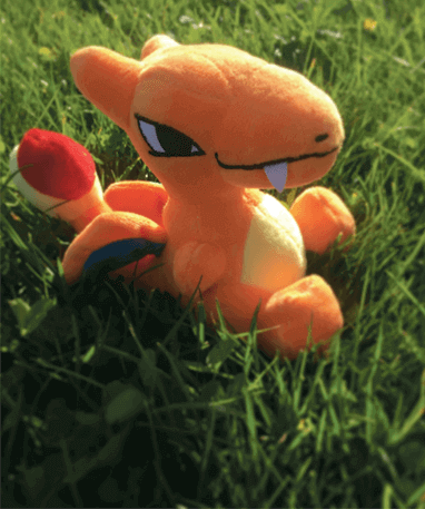 Charizard bamse - pokemon