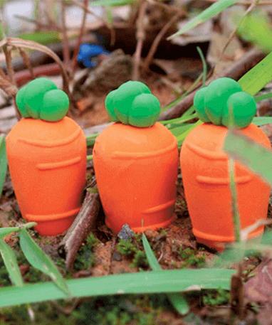 Gulerødder fra haven