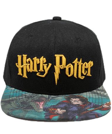 Harry Potter kasket